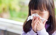 Bài thuốc phòng trị bệnh đường hô hấp mùa lạnh