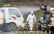 Thêm 1 ca nghi mắc cúm gia cầm, Hàn Quốc lo ngại dịch bệnh lây lan