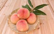 Đào mật, loại quả được phong là 'vua vitamin C' cực tốt cho sức khỏe