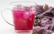Mách bạn cách làm nước lá tía tô cực nhiều lợi ích cho sức khỏe